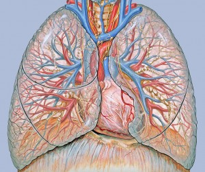 Oxygen Saturation Target of 88-92% in COPD: Evidence-based Medicine?