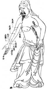 Acupuncture and Immune Modulation